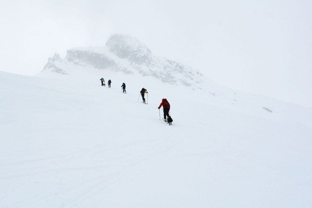 Backcountry skiers climbing