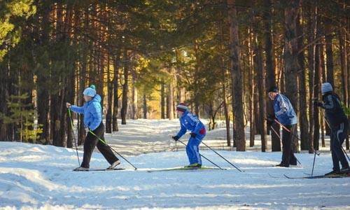 Where is XC Skiing Most Popular