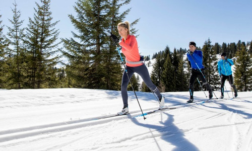 how much does cross country skiing cost