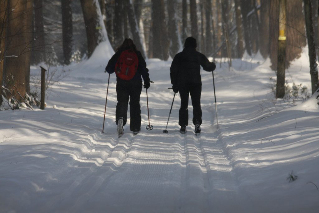 19 Best Cross-Country Ski Trails in New England