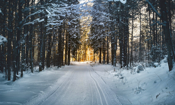 cross country ski trails michigan