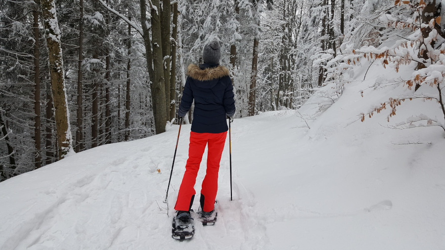 snowshoeing guide