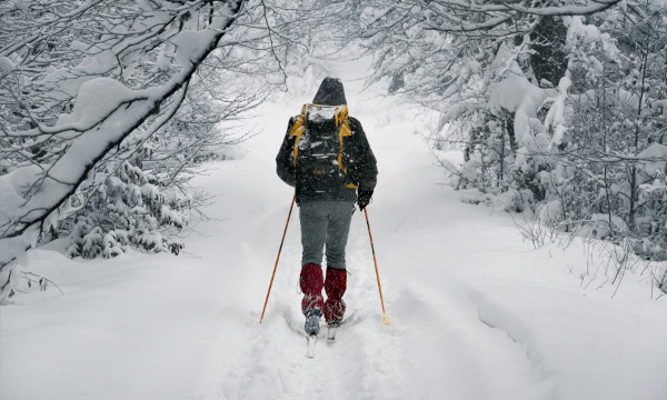 snowshoeing-vs-cross-country-skiing-vs-skishoeing-feat