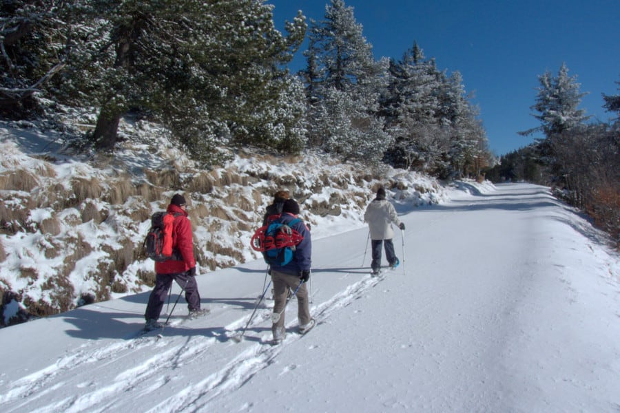 snowshoeing heatlh exercise