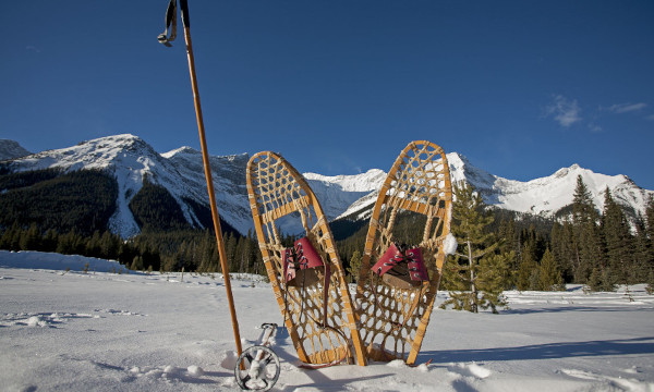 All-Types-Snowshoes-featimg